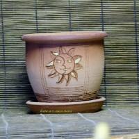 Солнышко, д.10-15см, цена 180-250руб